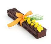 Japanse cadeau met mimosa — Stockfoto