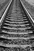 Les rails — Photo