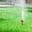 Sprinkler in the park — 图库照片