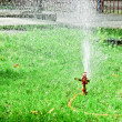 Sprinkler in the park — Stock fotografie