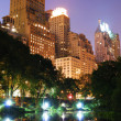 Central Park in New York City in der Nacht — Lizenzfreies Foto
