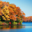 Постер, плакат: Autumn foliage over lake