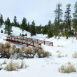 Snow field with bridge and trees — Stock Photo