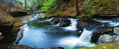 FOREST CREEK PANORAMA — Stock Photo