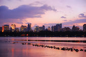 Sunset in Central Park, New York City — Stock Photo