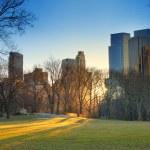 pôr do sol do central park, Nova Iorque — Foto Stock