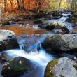 Stock Photo: Autumn creek foliage and rock