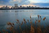 Central park, em nova york — Foto Stock
