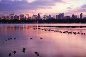 Central Park Sunset with New York City Skyline — Stock Photo