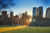 Central Park sunset, New York City — Stock Photo