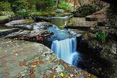 Woods creek — Stock Photo