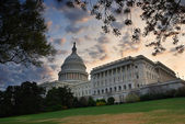 Capitol Hill Building, Washington DC — Stock Photo