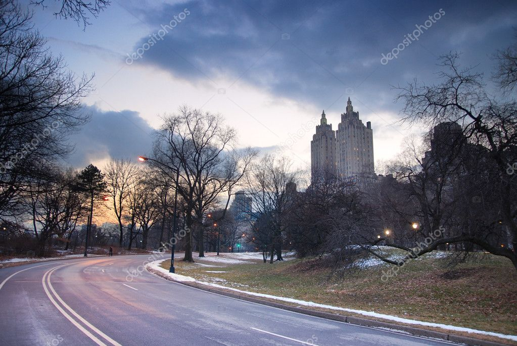Central Park at Dusk in New york city  Stock Photo #4025623