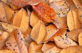 Magnolia Leaves — Stock Photo