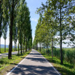 Stock Photo: Reichenau Island, Germany