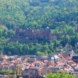 Heidelberg, Germany — Stock Photo