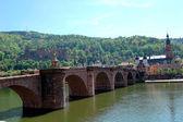 Heidelberg, alemania — Foto de Stock
