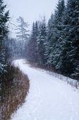 Pé pegadas na neve — Fotografia Stock