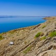 Dead Sea Shore - Stock Photo