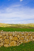 Grazing land stone wall — Stock Photo