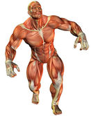 Muscle force an athlete — Stock Photo