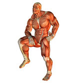 Muscle Body Builder standing on one leg — Stock Photo
