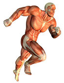 Muscle galloping Body Builder — Stock Photo