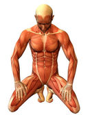 Study muscle man on his knees — Stock Photo