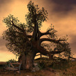 Old like a tree - Stock Photo