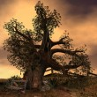 Stock Photo: Old like tree