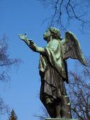 Angelo in cielo — Foto Stock