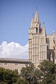 Gothic cathedral in Palma de Mallorca (Balearic Islands - Spain) — Foto de Stock