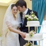 bruid en bruidegom snijden bruidstaart — Stockfoto