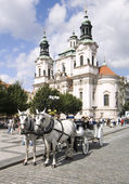 Cavallo drwan carrozza praga — Foto Stock