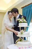 Bride and Groom cutting wedding cake — Stok fotoğraf