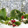 Stock Photo: Holly and red berries