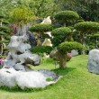 Beautiful gardens in Thailand - Stock Photo