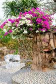Beautiful gardens in Thailand — Stock Photo