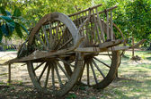 Ox cart — Stockfoto