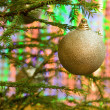 Royalty-Free Stock Photo: Oh Christmas Tree