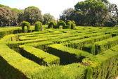 Labyrinth — Stock Photo