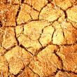 Stock Photo: Dried mud