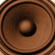 Speaker — Stock Photo #4427302