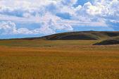 Tundra Hill — Stock Photo