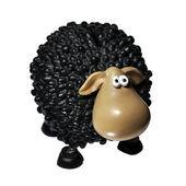 Sheep a Toy. A Coin Box — Stock Photo
