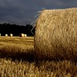 Hay roll in sunrise — Stock Photo #4038233