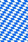 Bavarian flag — Stock Vector