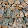 A pile of firewood — Stock Photo
