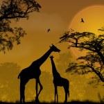 Two giraffes on jungle — Stock Vector