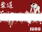 Grunge judo poster — Stock Vector